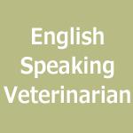 英語での診察も承ります。